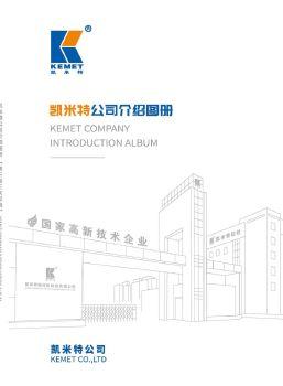 凯米特公司介绍图册(第三版三次印刷)