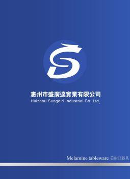 惠州市盛广达实业有限公司电子画册