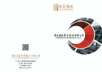 广东国鑫宣传画册