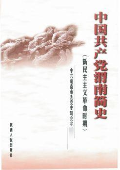渭南简史电子书