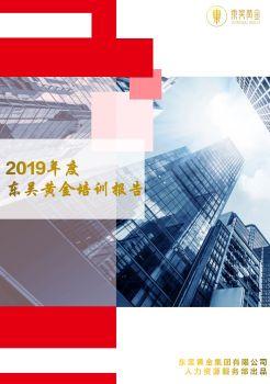 2019年度东吴黄金培训报告 电子书制作软件