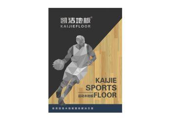 凯洁地板宣传画册