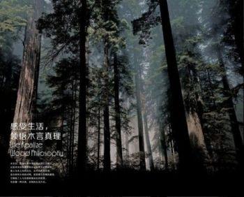 轻奢风&原木风电子画册
