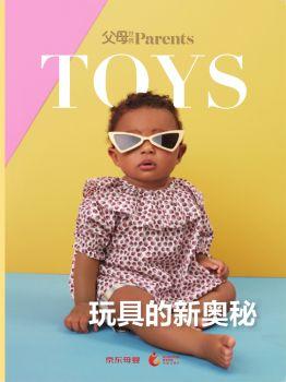 玩具的新奥秘电子画册