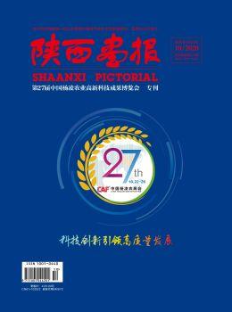 《陜西畫報》電子宣傳冊 電子書制作軟件