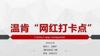 网红打卡点-王姬尹-1098176电子宣传册