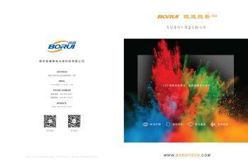 BORUI玻显投影产品手册