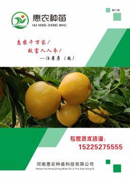 惠农种苗画册,电子书免费制作 免费阅读