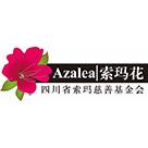 四川省索玛慈善基金会 电子书制作软件