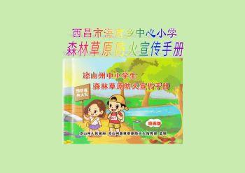 海南小学森林草原宣传手册