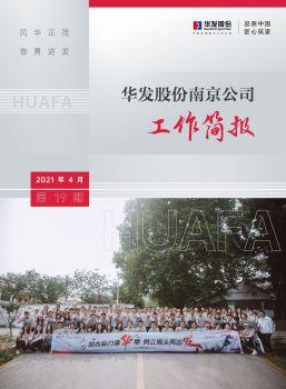 南京公司第19期工作简报电子画册