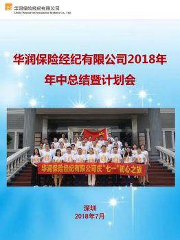 华润保险经纪有限公司2018年年中总结暨计划会
