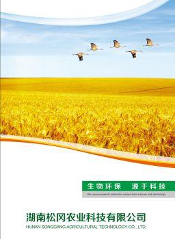 湖南松冈产品手册 电子书制作软件
