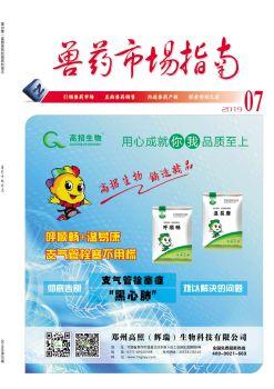 网刊同版 2019.07兽药市场指南电子宣传册