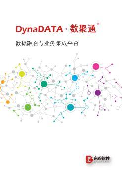 """""""DynaDATA·数聚通""""融合集成DM_V3.1_东谷软件电子书"""