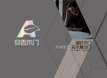 安吉木门    2020碳纤木门  PUR实木复合门  电子画册