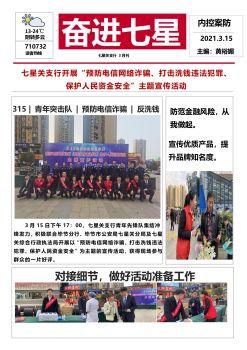 奋进七星·内控案防(3月刊)