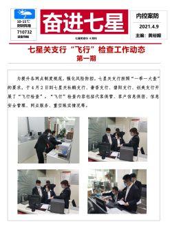 奋进七星·内控案防(4月刊)