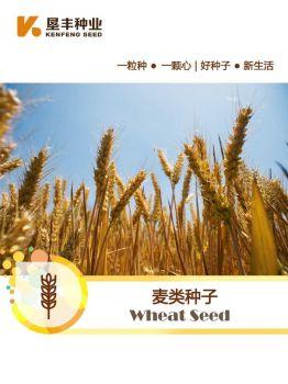 垦丰麦类种子宣传册,电子书免费制作 免费阅读