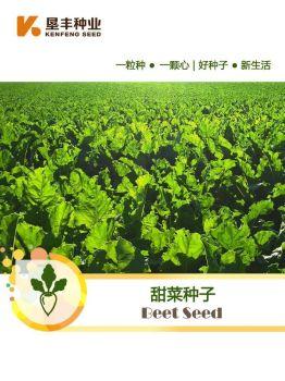 垦丰甜菜种子宣传册,电子书免费制作 免费阅读