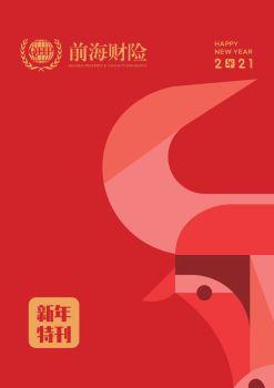 《前海财险》2021新年特刊——与时偕行  奋斗启新宣传画册