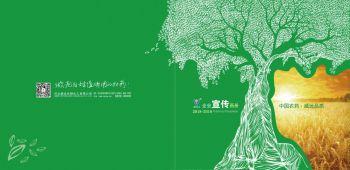 2019威远宣传画册
