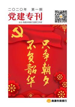 南通农商银行党建专刊 电子书制作软件
