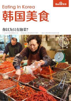 韩国旅游美食攻略,韩国美食攻略大全,韩国美食攻略电子画册