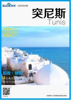 突尼斯旅游攻略大全,突尼斯自助游攻略,突尼斯自由行攻略指南电子刊物