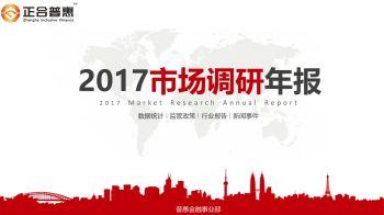 2017年普惠市场调研年报