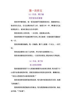 小燕子精英班作文集(1)电子书