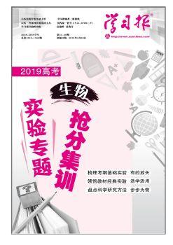 31-40合刊 电子杂志制作软件