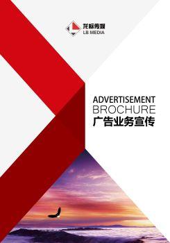 龙标广告宣传册