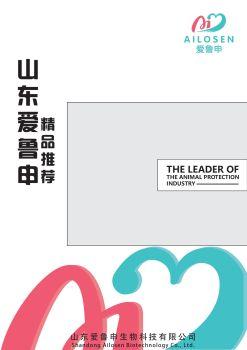 愛魯申精品推薦 電子書制作軟件