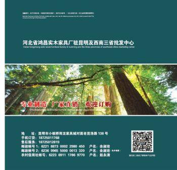 鸿昌电视柜2020全新上市电子画册