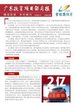 碧桂园集团扶贫办广东扶贫项目部1-2月份月报V3电子画册