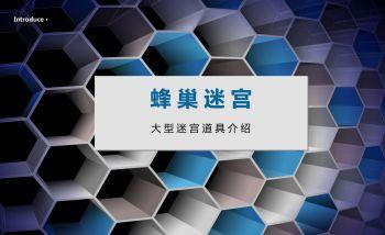 蜂巢迷宫简介电子画册