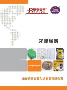 山东滨州龙峰化纤制品有限公司 电子书制作平台