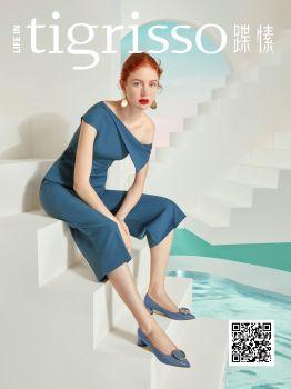 第3版 电子杂志制作平台