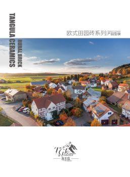 唐古拉陶瓷小规格欧式田园砖电子刊物