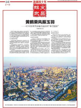 激越四十年—蝶变武昌电子杂志