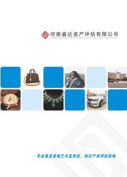 河南盛达资产评估有限公司宣传资料