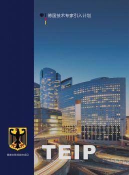 德国TEIP人才引入项目 电子书制作平台