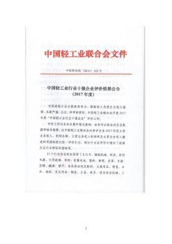 中国轻工业塑料行业十强企业宣传画册