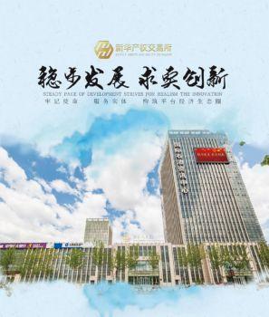 新華(大慶)產權交易所2015宣傳冊