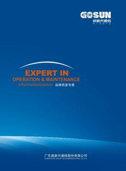 高新興企業宣傳畫冊(2010年01月版)
