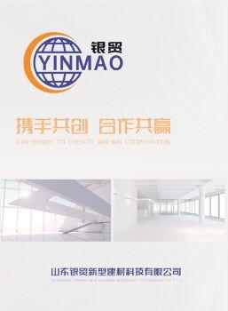 山东银贸新型建材科技有限公司企业画册 预览版