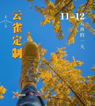 云雀定制11-12月月刊第一期