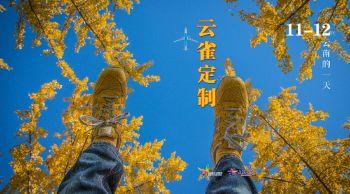 11月云雀定制电子杂志