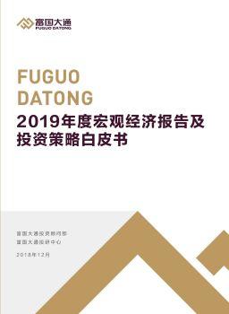 富国大通2019年度宏观经济报告及投资策略白皮书电子书